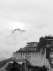 tibet-060824-08094932